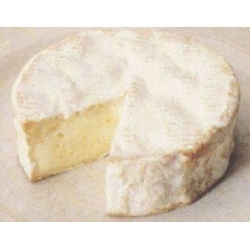 Somerset Camembert